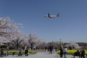 春の成田空港