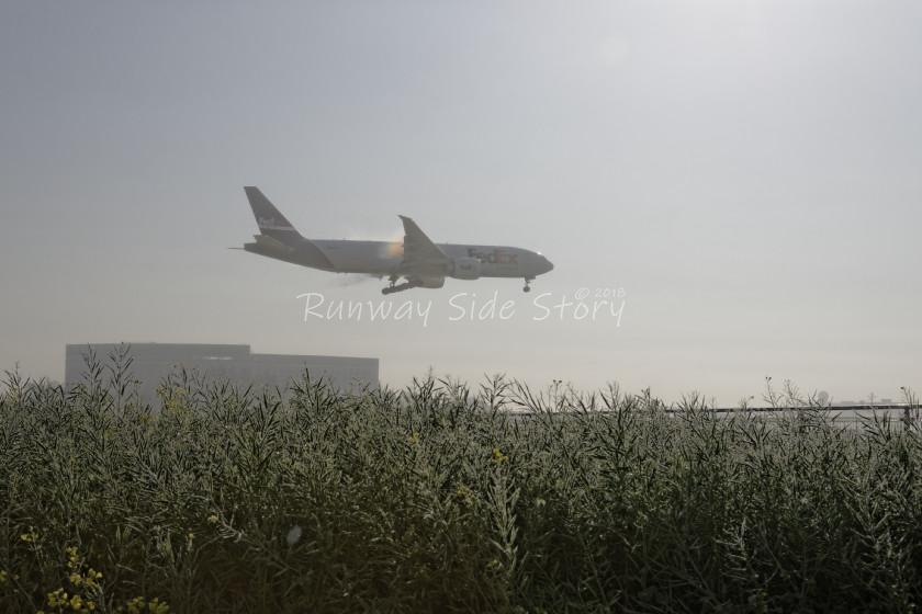 濃霧の成田空港